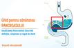 Insuficienta Pancreatica Exocrina: definitie, simptome si reguli de dieta